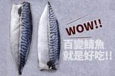 哇,不看可惜!神奇的鯖魚變化