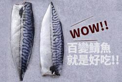 哇,不看可惜!神奇的鯖魚變化-中華料理