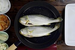 一鍋到底魚料理!-中華料理