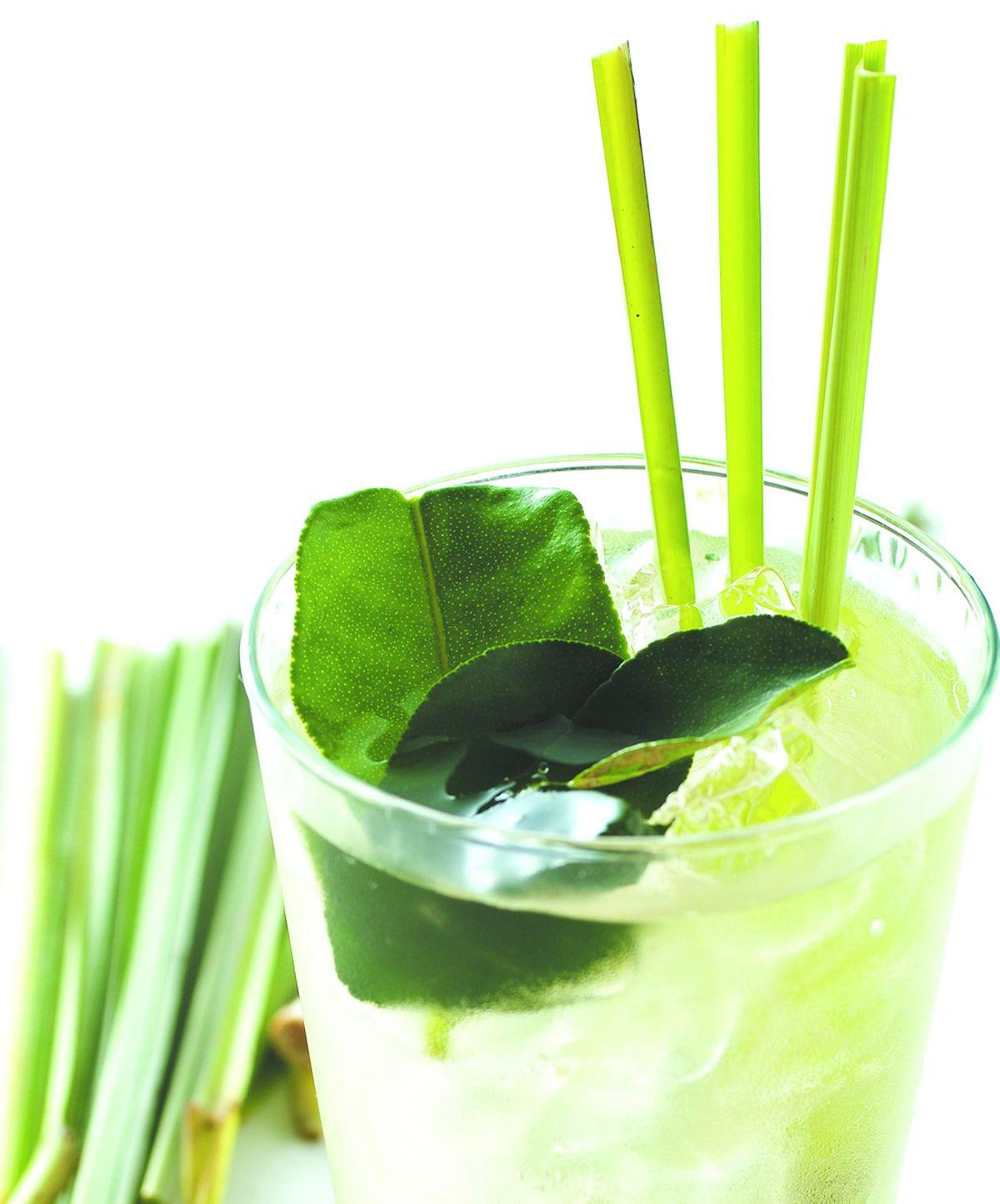 食譜:檸檬肉桂冰茶