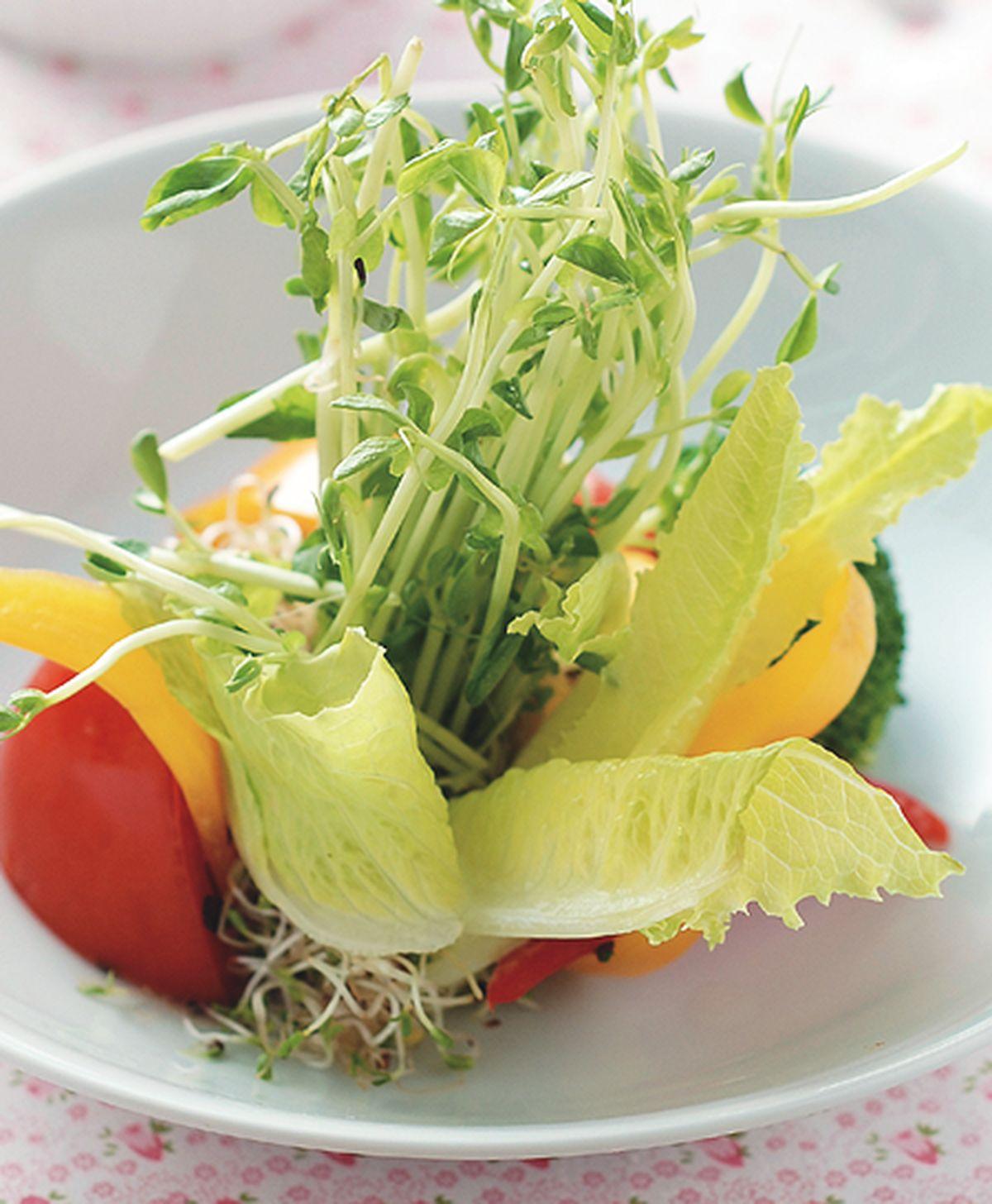 食譜:田園蔬菜
