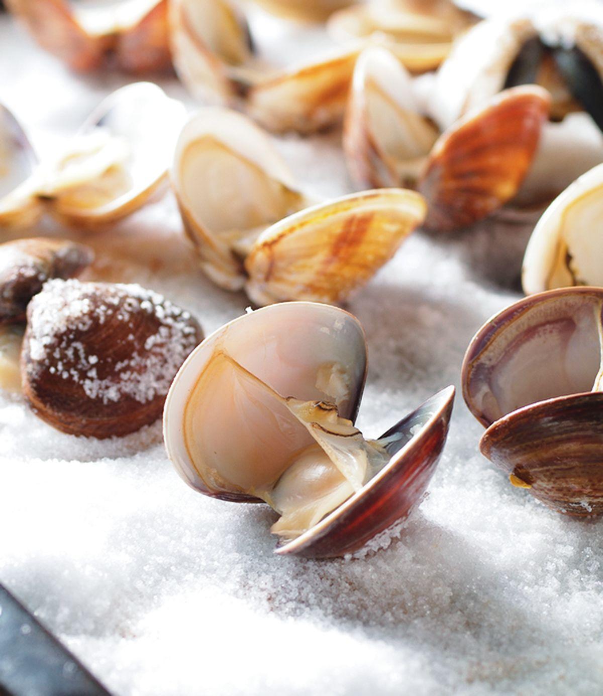 食譜:鹽烤大蛤蜊