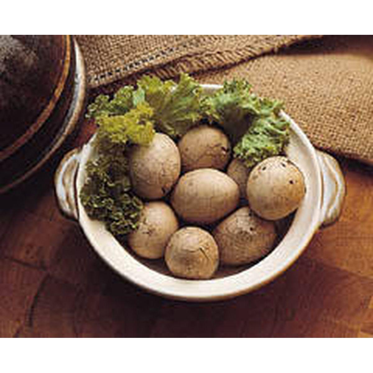 食譜:茶葉蛋(1)