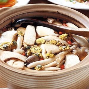 金菊普洱養生雞湯
