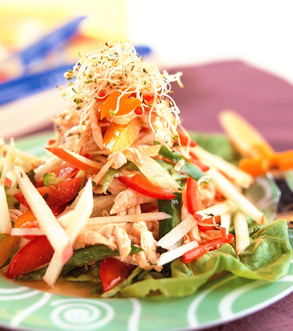 食譜:蘋果雞絲沙拉