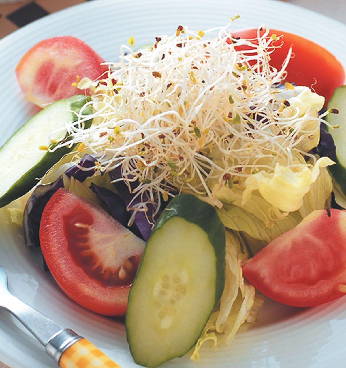 食譜:什錦蔬菜沙拉佐優酪汁