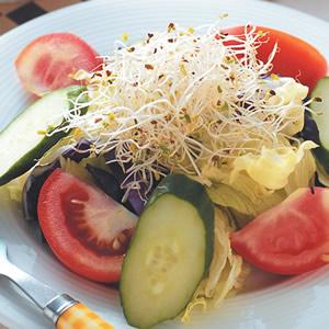什錦蔬菜沙拉佐優酪汁